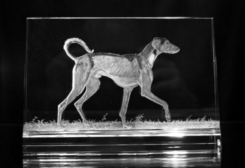 Crystal Glass Plaque with Dog