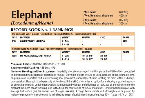 Elephant Records