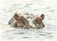 Hippo Watercolor