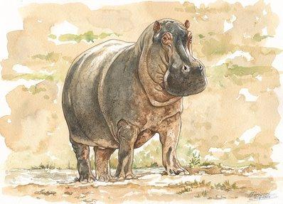 Hippo Watercolor 3