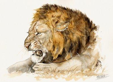 Lion Watercolor 1