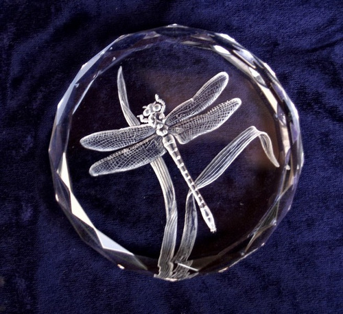 Crystal Glass Paperweight with Dragonfly