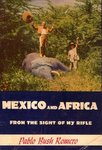 Mexico And Africa From The Sight Of My Rifle