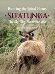 Hunting The Spiral Horns: Sitatunga: The Sly, Shy, Secretive One