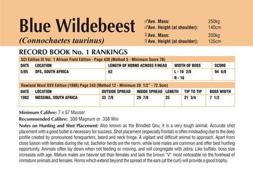 Wildebeest Records