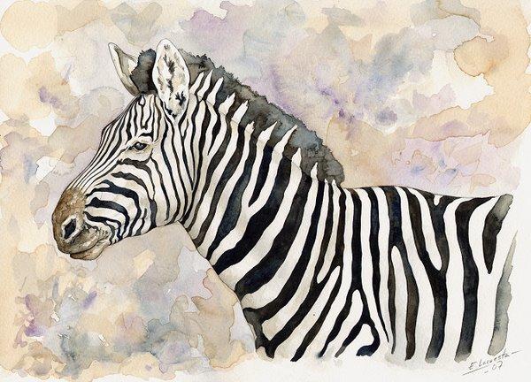 Zebra Watercolor 2