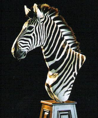 zebra mount