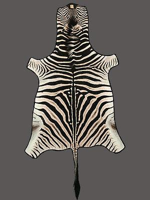 Zebra Rug Mount