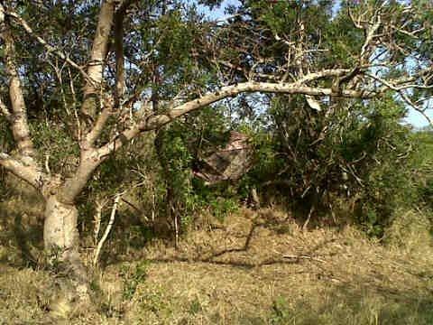 Zululand Leopard Hunt