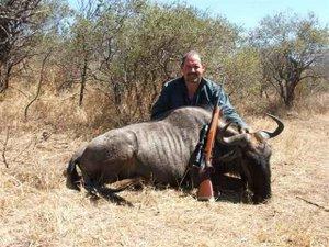 John Murdoch's Blue Wildebeest
