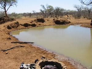 A Likely Waterhole