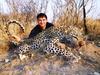 My Kalahari leopard